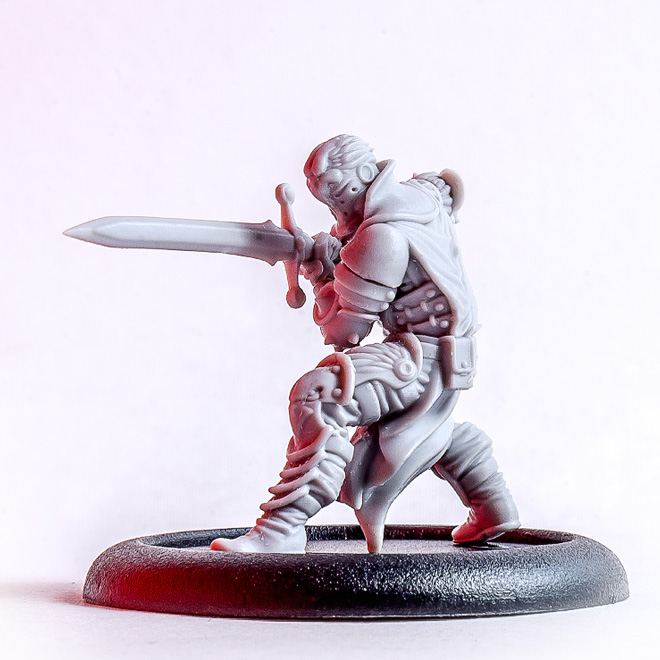 Eagle knight miniature photo